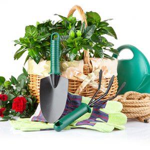 Товары для сада и дачи